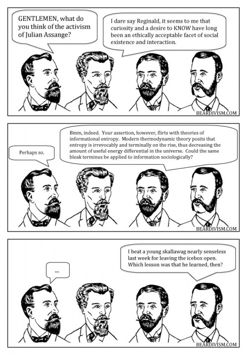 Wikileaks beard comic information entropy